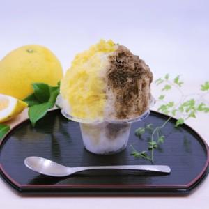 日本茶スタンドカフェ「八屋(はちや)」で月ごとに替わる限定かき氷発売!7月は「ほうじ茶と美生柑」