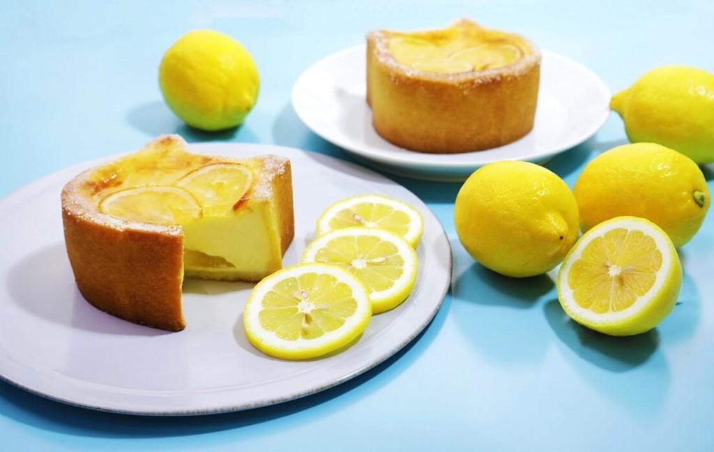 ねこねこチーズケーキ 瀬戸内レモン