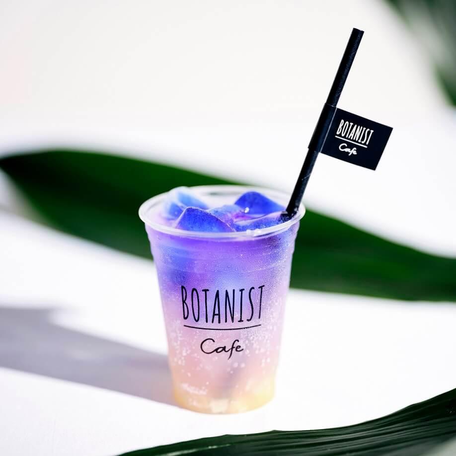 BOTANIST cafe  ボタニカルソーダ アロエ×パイン