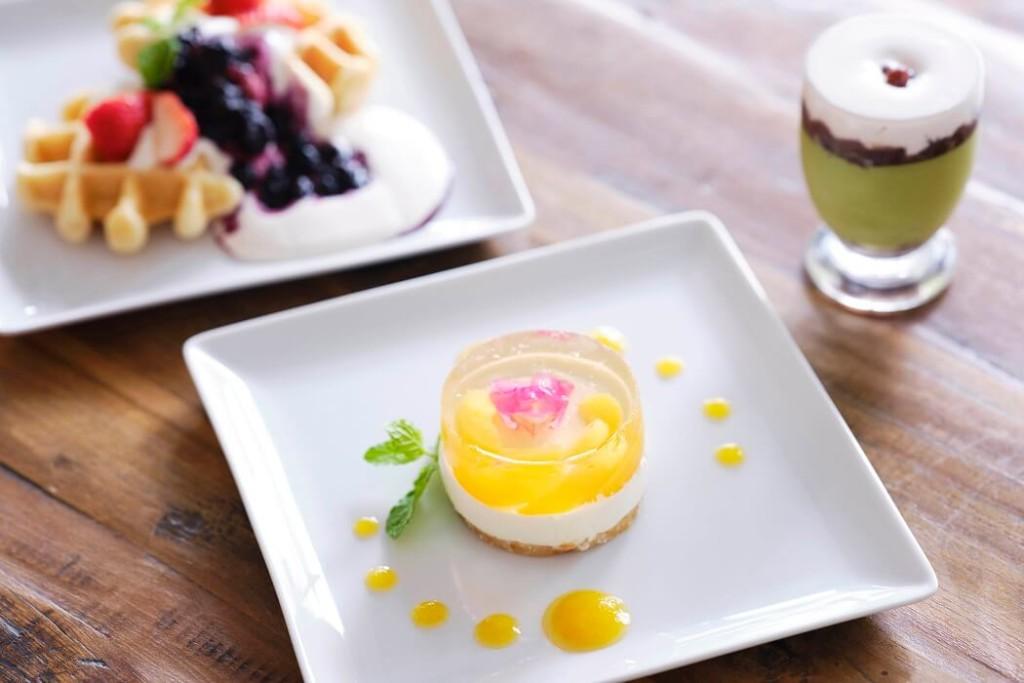 BOTANIST cafe 完熟あんずのチーズケーキ