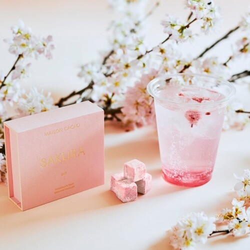 MAISON CACAO アロマ生チョコ 桜