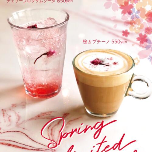 MICASADECO&CAFÉ 桜ドリンク