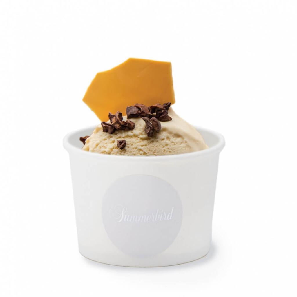 サマーバード オーガニック チョコレートアイス