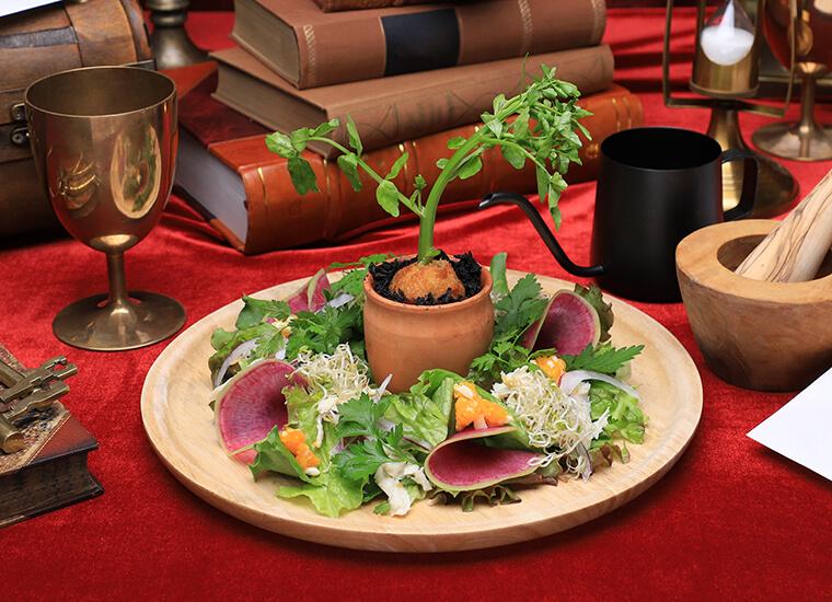 ハリーポッターカフェ 薬草学サラダ