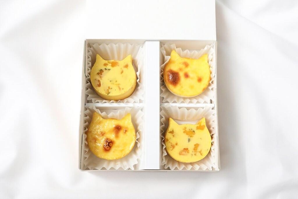 ねこねこチーズケーキ にゃんチー かぼちゃ プレーンセット
